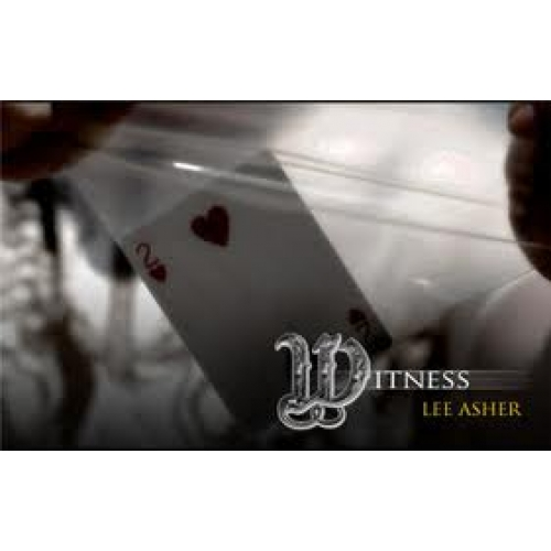 Witness by Lee Asher